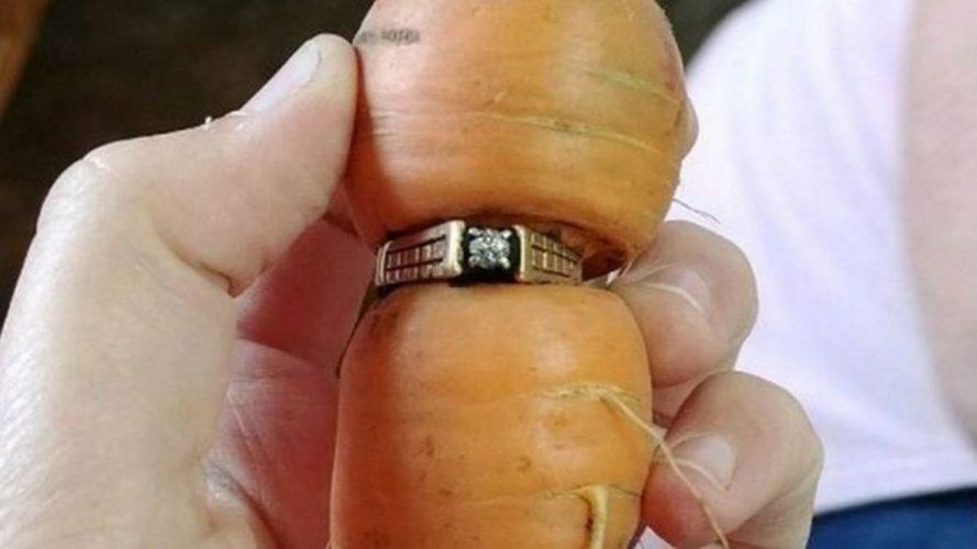 Kanada: Davno izgubljeni dijamantski prsten pronašla na mrkvi u bašti