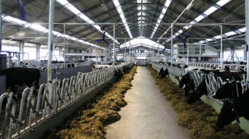 Prva bh. biogasna elektrana svu svoju proizvodnju bazira iz prerade otpada