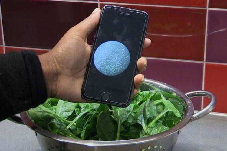 Uskoro aplikacija koja prepoznaje ima li bakterija u hrani