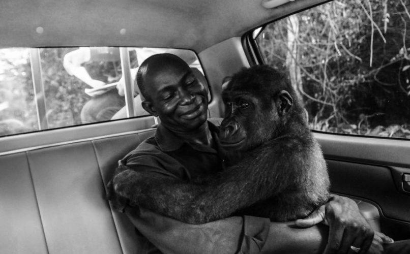 Dirljiva priča se krije iza fotografije godine
