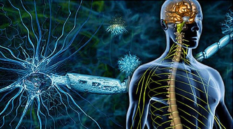 Obilježen Svjetski dan multiple skleroze: U TK oboljelo 270 osoba