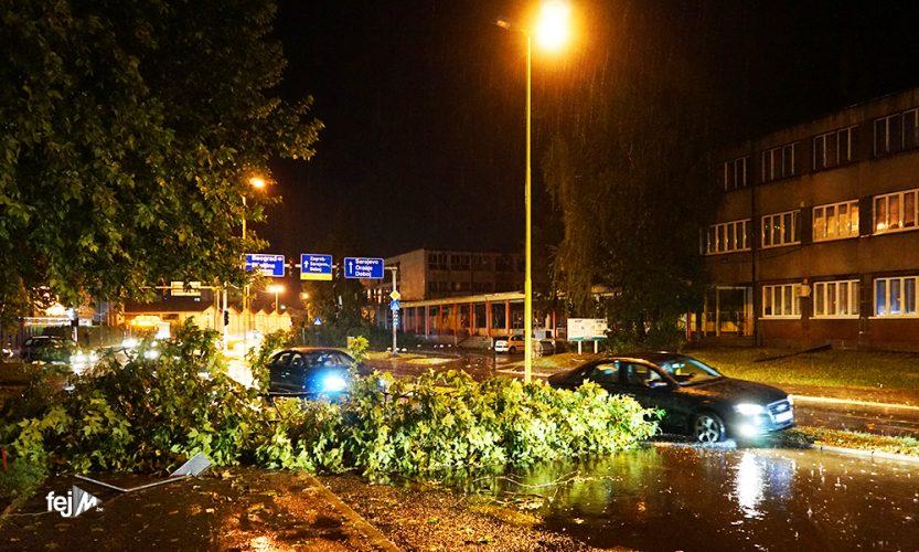 Usljed velikog nevremena u Tuzli padala stabla, pričinjena materijalna šteta na vozilima (VIDEO)