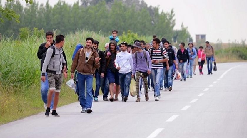 Nastavljen trend pada broja migranata u TK