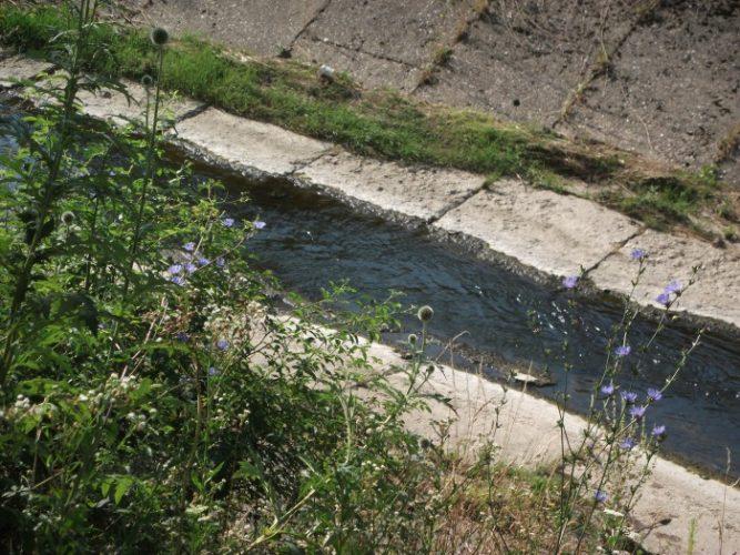 Ženska osoba s teškim povredama pronađena u koritu rijeke Jale u Tuzli