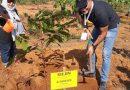 Palestinac Ghassan Husni, ljekar iz Tuzle u humanitarnoj misiji širom svijeta