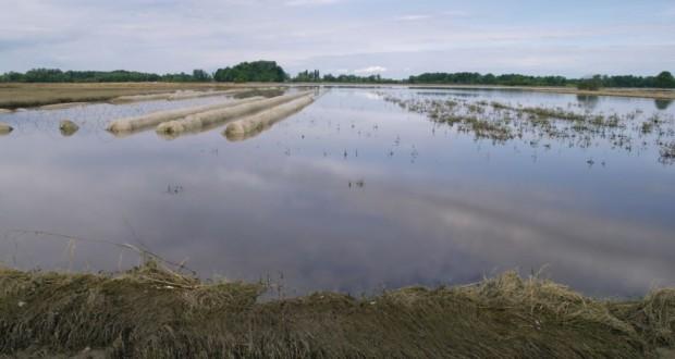 Na području Doboj Istoka i Gračanice potopljena poljoprivredna zemljišta