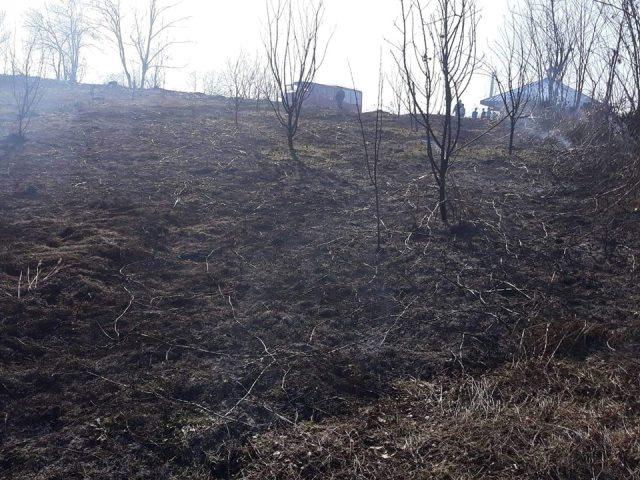 Vatrogasci gasili požare niskog rastinja u Lukavcu, Srebreniku i Tuzli