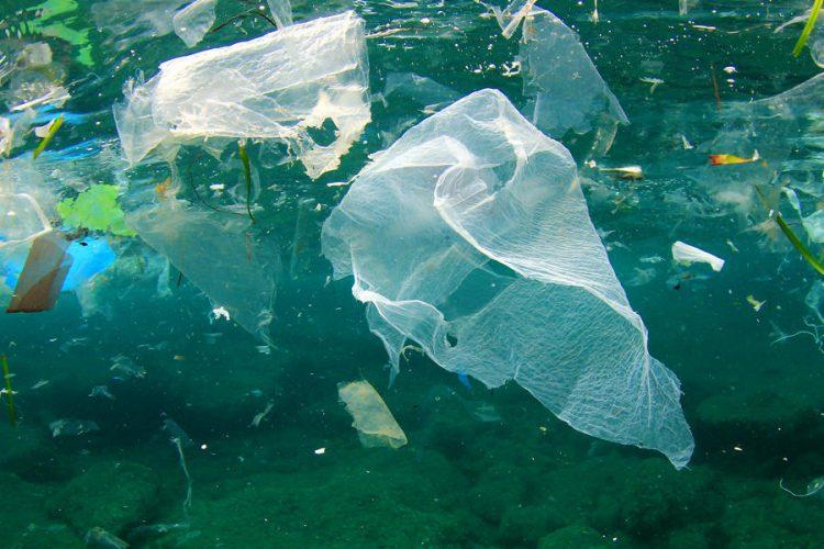 Do 2050. godine u okeanima će biti više plastike nego riba
