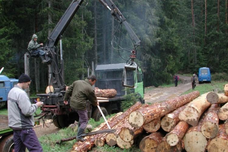 Smanjena prodaja proizvoda šumarstva, poljoprivrede i ribarstva