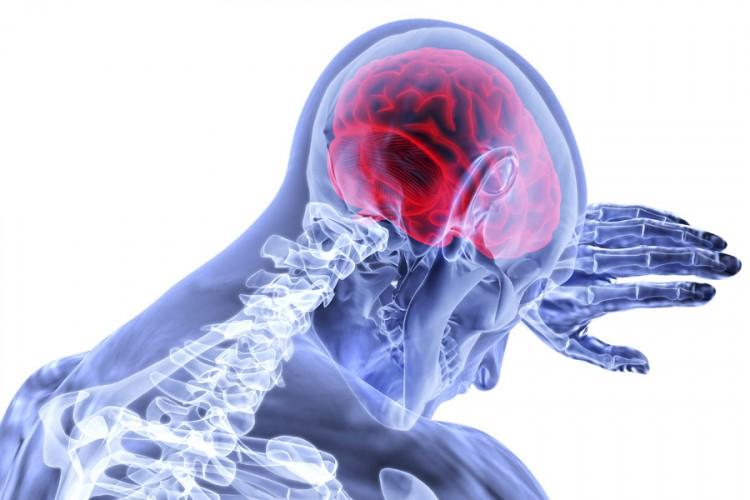 Test koji otkriva koliko je star vaš mozak