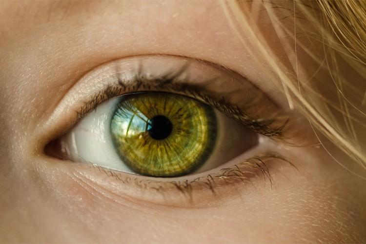 Naminice koje će vam poboljšati vid
