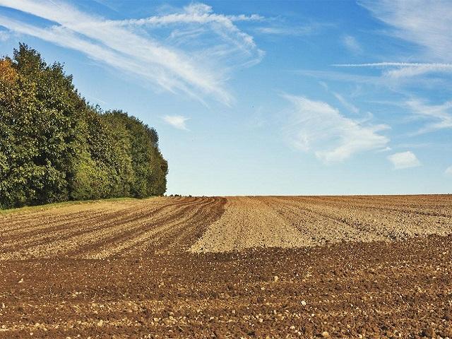 Zabilježen rast poljoprivredne proizvodnje u TK, šta je sa podsticajima?