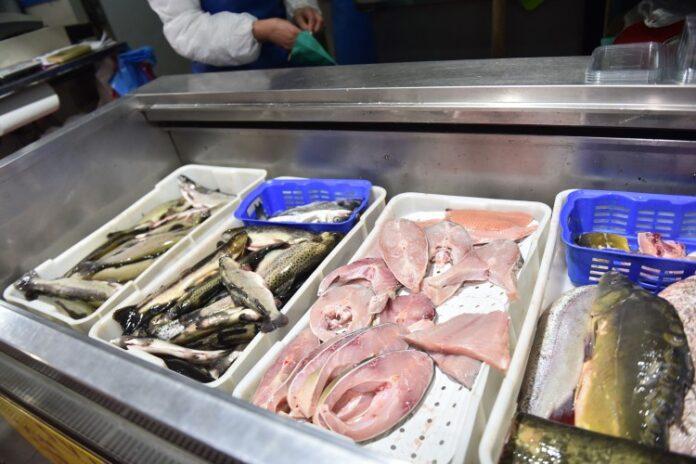 Povećan izvoz mesa i ribe iz BiH