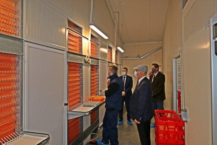 Kompanija Bingo: Repro centar i Inkubatorska stanica za uzgoj jednodnevnih pilića zvanično počeli sa radom