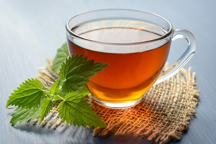 Čaj od koprive dragocjen za zdravlje