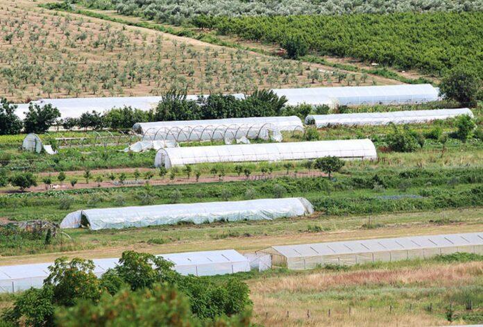 Za poticaje poljoprivredi 87 miliona KM