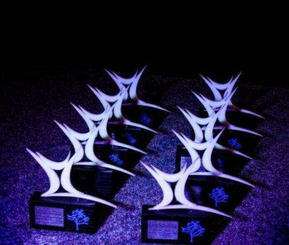 Mladi Tuzle dodijelili Godišnja priznanja za 2020. godinu