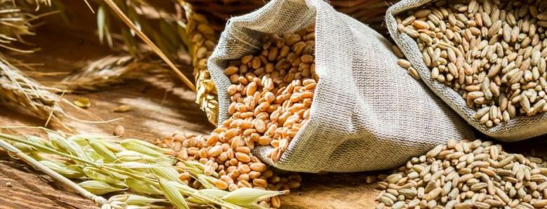 Rekordna poskupljenja šećera, kukuruza, pšenice, cijene će znatno rasti i u BiH