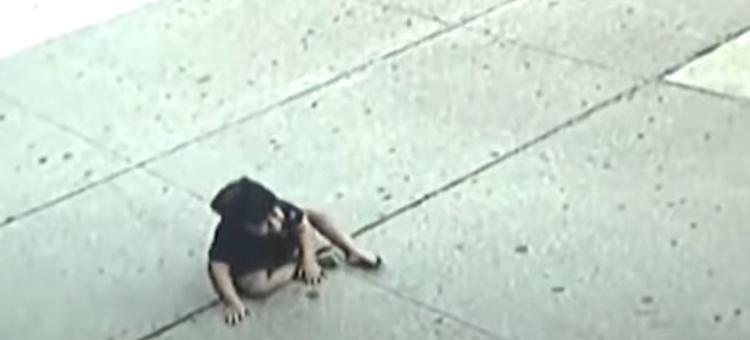 Trogodišnjak u New Yorku preživio pad s petog sprata