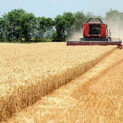 FAO – Rast cijena prehrambenih proizvoda na svjetskom nivou